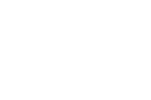 Touch of Gold new logo